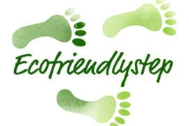 Création Logo eco friendly step