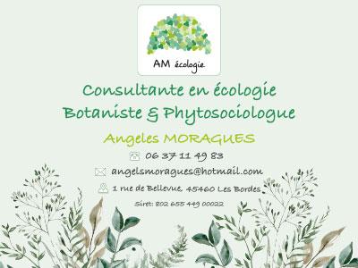 Panneau AM écologie