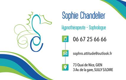 Maquette carte de visite du Cabinet Sophrologie Hypnothérapie Sully sur Loire - Gien